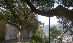Le jardin Ibn Badis